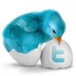 Twitterとアフィリエイトを利用してアクセスを伸ばせるのか試してみた。